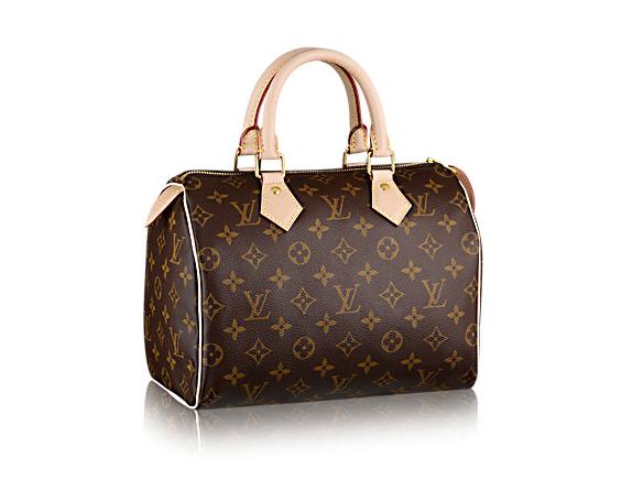 Image of Louis Vuitton Handbag for National Handbag Day